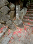 Rose pedals carpet the stone steps in Onomichi.