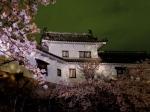 Himeji Castle wall
