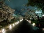 Lighted walk way at Himeji Castle