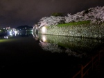 The moat at Himeji Castle